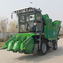 Gold Dafeng China manufacturer 3 row corn harvester