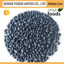 Organic Vegetable Seeds Like Black Kidney Beans