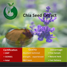 Natural Herb Chia Seed Chia Seed Powder Chia Seed Extract