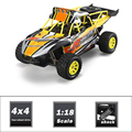 Top Sale Radio Control Toy 1/18 4WD RC Truggy