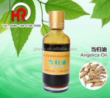 angelica sinensis plant extract with modern machines