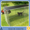 Dog Houses /Dog fence