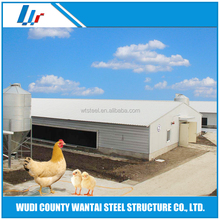 Steel structure chicken house poultry farm construction