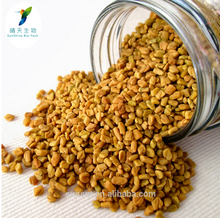Fenugreek P.E Herbal Medicine for Penis Enlarge Fenugreek Seed Extract