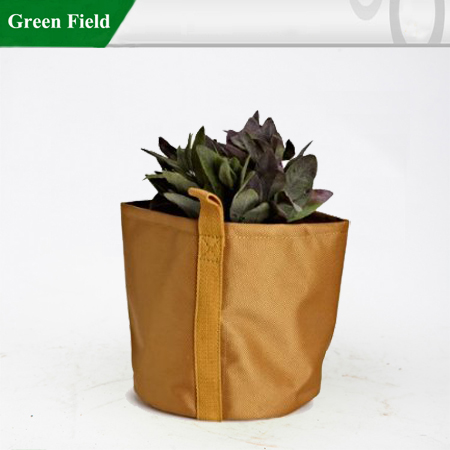Green Field Small Round Shaped Grow Flower Pots