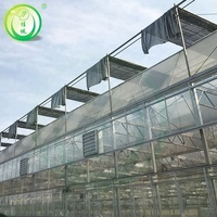Cheap Price Multi Span Venlo Type Glass Covered Cooling System Greenhouse For Ecological Restaurant