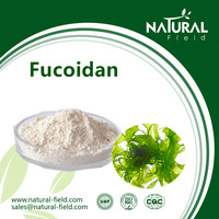 Best Sells Product Seaweed Extract Fucoidan Powder