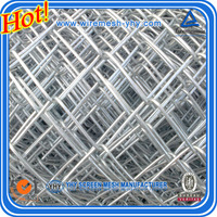 Made In China Hot Dip Galvanised Chain Mesh Fencing with Competitive price