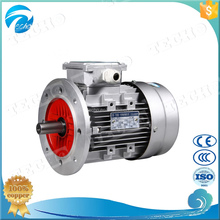 MS802-2 three phase induction motor