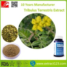 Libido enhancer tribulus terrestris 90% bulk extract powder