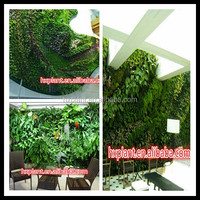 wholesale artificial garden vertical green plants,boxwood hedge plant wall artificial boxwood hedge fence plant wall