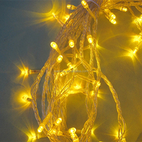 China professional Christmas decoration light supplier Outdoor LED string light factory