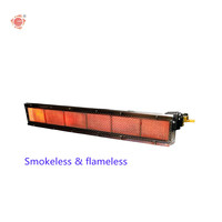 Infrared Heating Gas Burner System for Coating and Drying Tunnel HD242