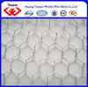 /product-detail/alibaba-gold-supplier-galvanized-chicken-coop-hexagonal-wire-mesh-iso-and-sgs--60101101446.html