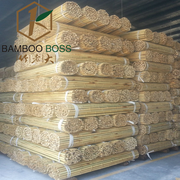 Natural bamboo fencing high quality bamboo fence