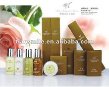 2012 new style hotel amenities supply