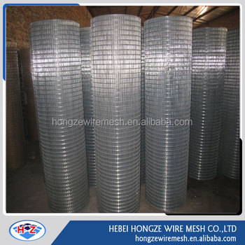Bird Cage 10 Gauge Welded Wire Mesh Roll from Anping Hongze Factory