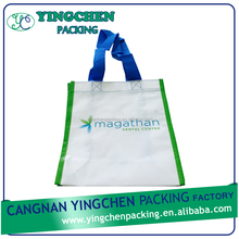 small offset printing Non Woven shopping bag Supplier China