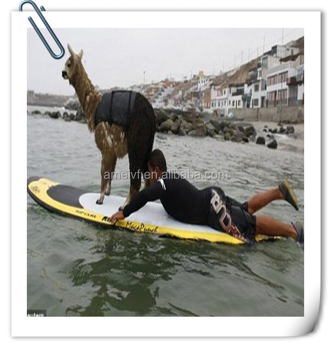 Shenzhen Custom Durable Plastic Stand UP Paddle board