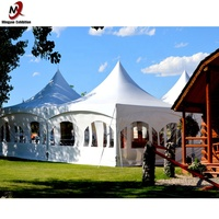 10x10m German Good Quality White Outdoor Canopy Pagoda Marquee Tent for Event, Party and Wedding