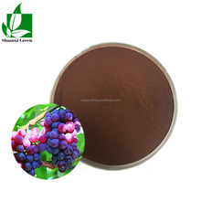 Natural Water Soluble Anti-Oxidant Anti-Aging fuction Grape Seed Extract