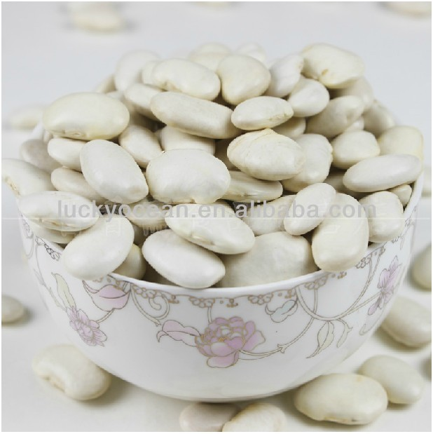 new crop Japanese type white kidney beans