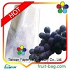 TPBI growing packing protective grape bag paper packaging supplier in Taiwan