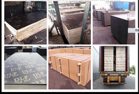 18mm waterproof glue brown color formwork Film Faced Plywood/Concrete Plywood/marine plywood for construction