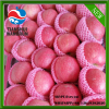 chinese red apple pink apple fruit pink lady apple fruit pink apple price apple price