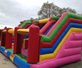 Double inflatable slide/fun inflatable slide kids slide for sale