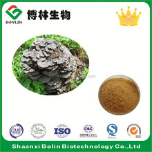 Bolin Supply Coriolus Versicolor Mushroom Extract / Yunzhi Mushroom Extract with Factory Price