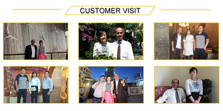 custom visit