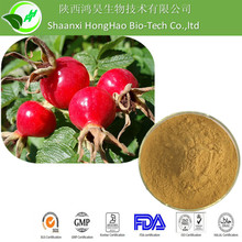 100% Natural Pure superior quality Rose Hip Extract Powder/ Rosehip polyphenols/ Rose Hip Extract