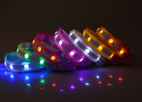 Dog paw printing led dog collar
