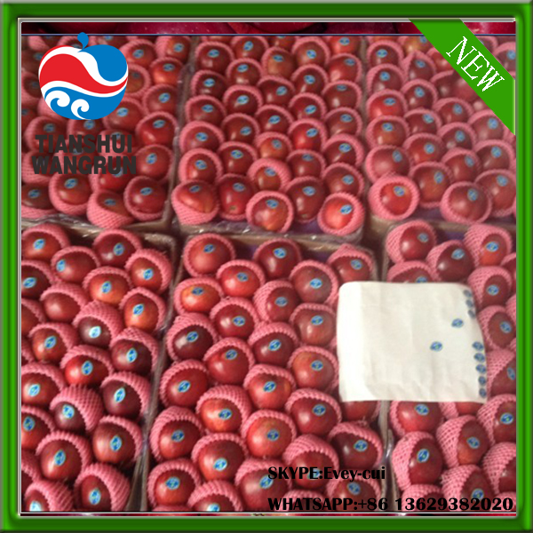 apple fruit apple price red apple factory huaniu apple mature apple price