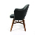 Leisure Hotel Replica Arm Lounge Chair