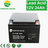 China made 12v 24ah exide battery price