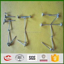 umbrella head roofing nail for asphalt shingles/umbrella roofing nails with rubber