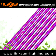 Best Selling Products Led Grow Light 60-120cm T8 Led Light Bar Grow Light 430nm 460nm 630nm 660nm For Hydroponic Grow System