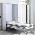 Modern Manual Vertical Hidden Transformable Murphy Wall Bed