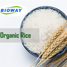 2018 New Non-GMO Certified Organic Hydrolyzed Textured <strong>Rice</strong> Protein