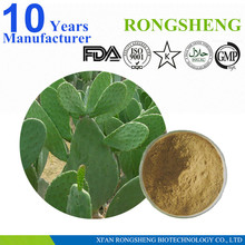 Top quality Pure Natural Cholla Stem Extract