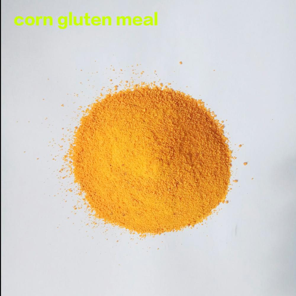 Manufacture bulk Corn Gluten Meal Prices for pig feed