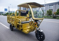 Cargo electric tricycle price / high quality tricycle with roof / tricycle for sale china