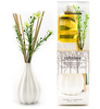 150ML flower reed diffuser nature scents reed stick provide oem