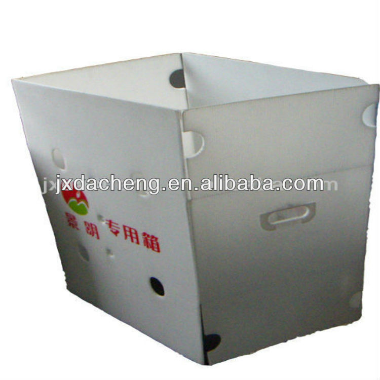 High Quality PP Corrugated Plastic Fuit Packaging Boxes