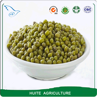 Green mung beans with best price
