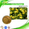 Hot Sale Catclaw Buttercup Root Extract, Ranunculus ternatus Thunb., 3%-5% Alkaloid
