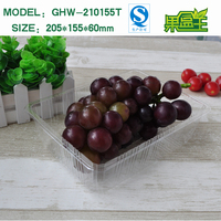 Food grade transparent rectangular long clear plastic packing tray