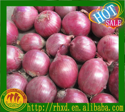 new crop 2016 fresh Red Shallot Onion